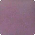 violet_sg_lg