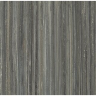 steely blue gray stripes with lighter ash stripes