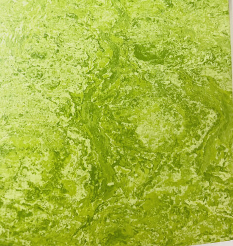 Zesty Lime Wheatgrass color