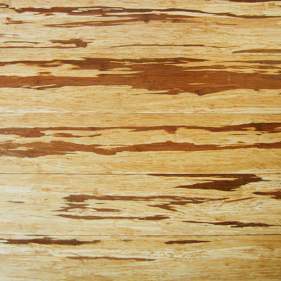 Eco friendly flooring fiberstrand bamboo swatch for Eco friendly flooring