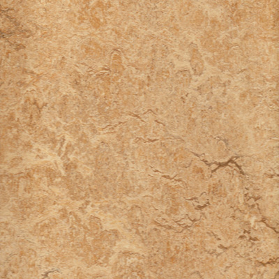 Eco friendly flooring linoleum swatch for Eco friendly flooring